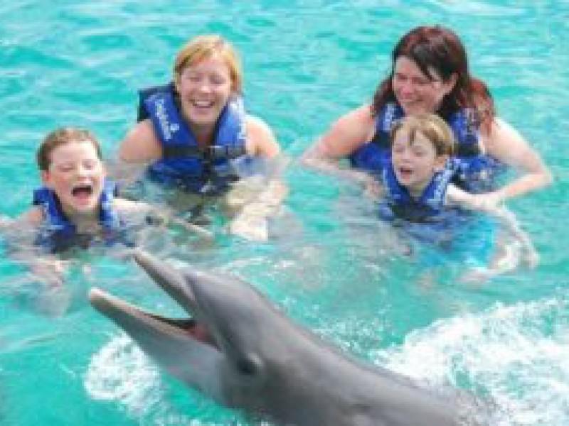 Luan: Een dolfijne trip