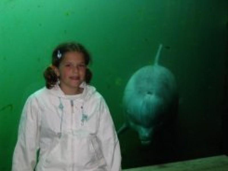 Suzanne naar het dolfinarium