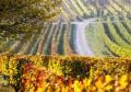 Unieke wijnreis voor 4 à 6 personen naar de regio Burgenland in Oostenrijk