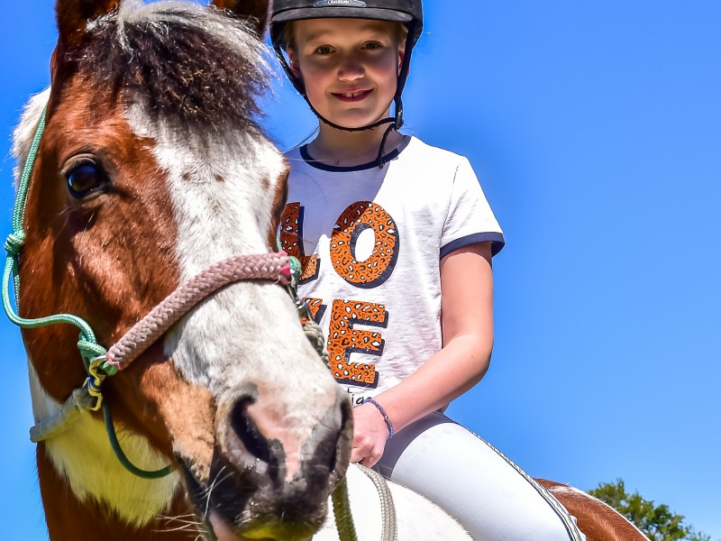 Emma's droom bij 'Paard zoekt baas'
